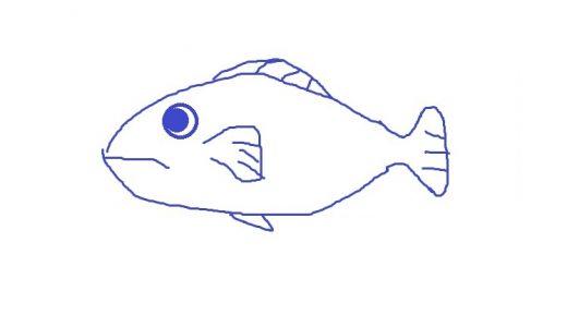 え?自分で描いた魚が水族館で泳ぐ!?