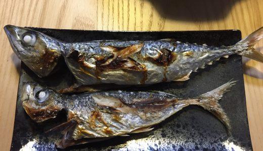 【さかな料理】アジとサバの塩焼きどっちが美味しのか食べ比べ!