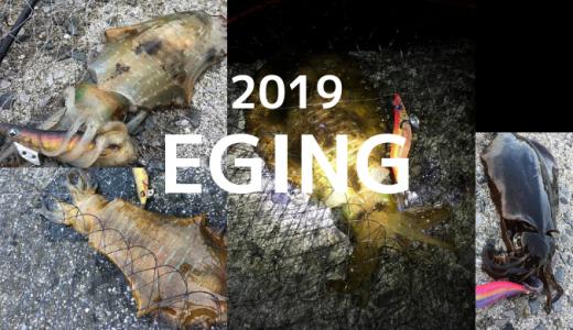 2019年エギング釣行まとめ